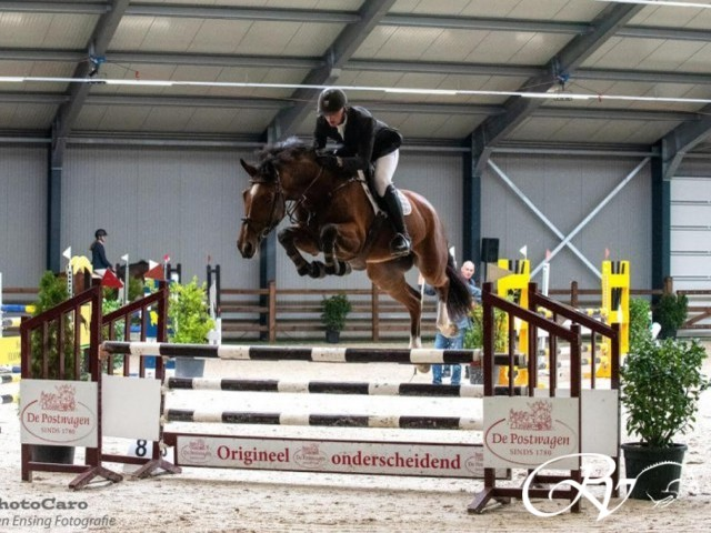 Just Action RV shows his jumpings skills with rider Julian de Boer.