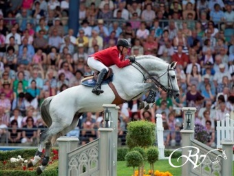 FOR SALE: EMBRYO FROM TOP SIRE CICERO Z OUT OF THE INTERNATIONAL SHOWJUMPER PRODUCER: Nienke RV.   (VERKOCHT NAAR CANADA)
