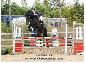 Available RV (Padinus x Jus de Pomme) jumping international 1.35m with James Chawke, owner LFS Sporthorses.