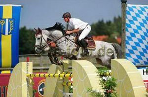 Uberlino RV (Cavalier x Amethist) International 1.35m horse with rider Sönke Kohrock.