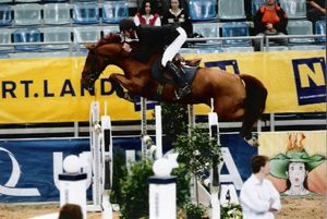 Twin Twin RV (Calvados x Amethist) International CSI*** 1.50m with rider Jur Vrieling.