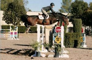 Washington (Wreaker RV, Heartbreaker x Indorado) jumping Grand Prix with amazon Allison Kroff.