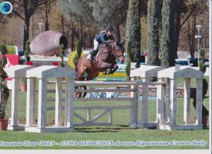 Champion de Quidam RV (Quidam de revel x Emilion) jumping International CSI*** 1.45m with amazon Maureen Bonder.